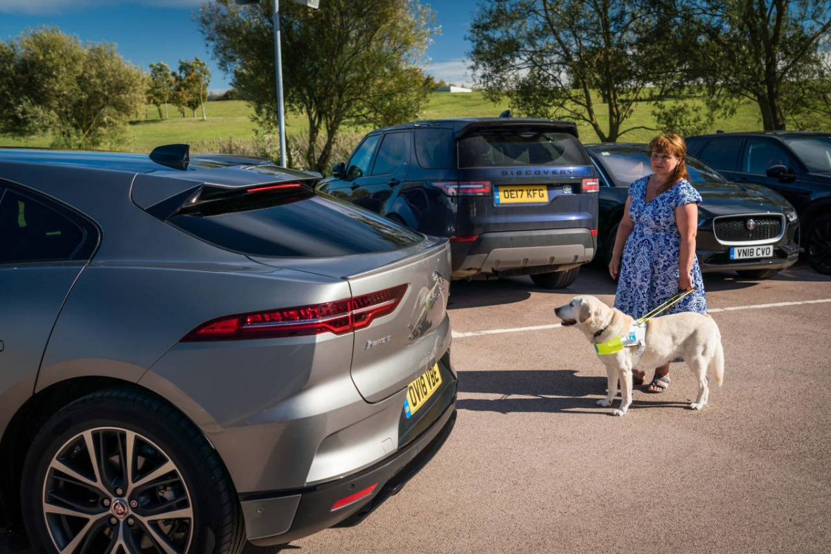 New Electric Car Law Introduced to Protect Pedestrians Image 2